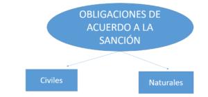 Obligaciones de acuerdo a la sanción
